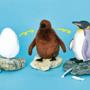 「卵」→「ヒナ」→「成鳥」へと3变化!! フェリシモ×海遊館の「オウサマペンギンぬいぐるみ」が話題!