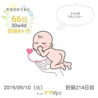 妊婦の心の拠り所