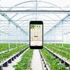 農業のAI化について
