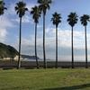 横須賀・佐島から鎌倉・材木座へ 三浦半島のウエストコーストを歩く