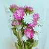 「花を飾ること」は自分と暮らしを豊かにしてくれる。