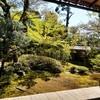 【京都】【御朱印】妙心寺塔頭『大法院』に行ってきました。 京都旅行 京都観光 女子旅 庭園
