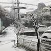 雪に情報が集まる