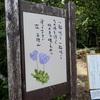 【上信越】平標山〜仙ノ倉山 2018年8月19日