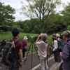 葛西臨海公園の探鳥会ムービーをアップしました!