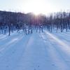 -26℃の美瑛の朝、青い池の日の出の風景と美瑛川の川霧・ダイヤモンドダスト【1月12日撮影】