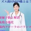 ビフィズス菌【HN019株】は免疫システムの強化を強化して病気リスクを低減します!