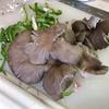 上田の野菜で何つくろう