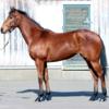 2021-2022 POG 牝馬第4位