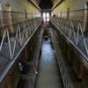 旧メルボルン監獄で囚人体験