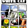 【映画】『黒猫・白猫』 エミール・クストリッツァ 1998年 Black Cat, White Cat
