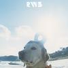 """楽曲紹介!RADWIMPS×3rdアルバム""""RADWIMPS3 無人島に持っていき忘れた一枚""""のおすすめ曲!"""