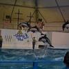 【子連れ北海道旅行】元北海道民の2017年夏休み家族旅行プラン【2日目】