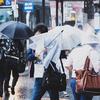 「台風」に関する英語表現