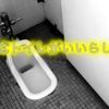 【便秘の方へ】和式トイレがオススメらしいよ