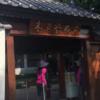 【台南】ガジュマルの生命力に圧倒されました!「安平樹屋」