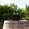おすすめ生ワインをご紹介!産地や製造方法は?