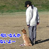 お初 訓練試験4