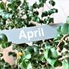 2019年4月:先月の振り返り