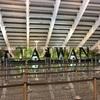 【個人手配】GWの台北旅行(3泊)でかかった費用はいくら!?