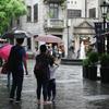 雨の日には雨の日の写真を貼る