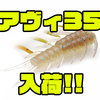 【RAIDJAPAN】前回即完!究極の喰わせベイト「AVI35」通販サイト入荷!