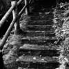 別荘DIY 憧れの苔むした外階段にする【前半】