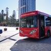 ANAでオーストラリアのパース旅行に行ってきました!⑦(ロットネスト島観光)