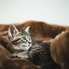 ぐっすり眠れてスッキリ起きれる方法