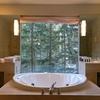 米Kohler(コーラー)、アレクサ対応の浴室ミラーを発売