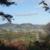近つ飛鳥風土記の丘(一須賀古墳群)その1 大阪府南河内郡河南町東