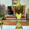 Nhận sản xuất cúp thể thao, bán cúp bóng đá, cung cấp cúp vinh danh