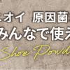 4.12 福島競馬 注目馬
