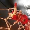 吉岡愛花 / せき 二人展 「密花結び」を見てきました