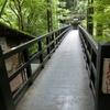 旅行記 京都観光 嵐山で湯豆腐ディナーと鵜飼見学