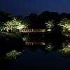大仙公園日本庭園 春夜爛漫
