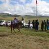 馬旅1日目〈モンゴル④〉