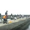 アオリイカ・アジ釣り・波切港 2