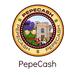 【速報】Pepecashが9円に!4時間で6倍に上昇!