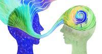 """ハーバード元研究員「○○には99.9%従うべき」脳科学的に最強な """"人生のお手本"""" の見つけ方"""