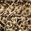 「蛮族が闊歩する欧州」と伝教師達による秩序回復の試み