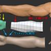 Zbrushでハイポリメッシュとローポリメッシュを結合する(Blenderも使います)