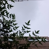 作曲工房 朝の天気 2017-09-07(木)くもり