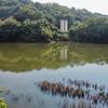 加茂路池(岡山県倉敷)