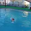 溺れる忍犬
