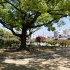 福山ばら公園