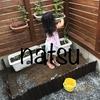 【畑日記 秋どれ胡瓜】我が家の庭に畑を作りました^^ きゅうりの種まきと発芽編