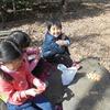 椿の花を知る~4歳児クラス~