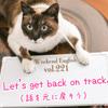 【週末英語#221】「話を元に戻そう」は「Let's get back on track.」