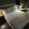 【宿泊記】ホリデイ・イン ニューデリー エアポート  Holiday Inn New Delhi Int'L Airport